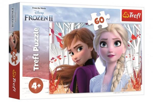 Puzzle Ledové království II/Frozen II 60 dílků 33x22cm