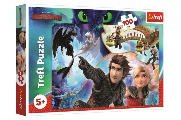 Puzzle Jak vycvičit draka 100 dílků 41x27,5cm