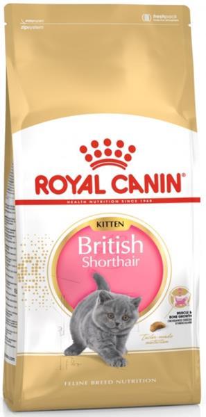 Royal Canin Feline BREED Kitten Br. Shorthair 2 kg