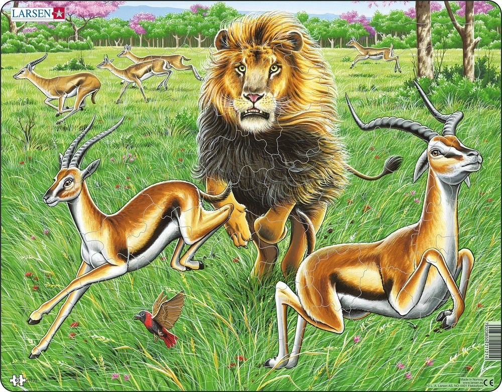 Puzzle Lev na lovu 63 dílků